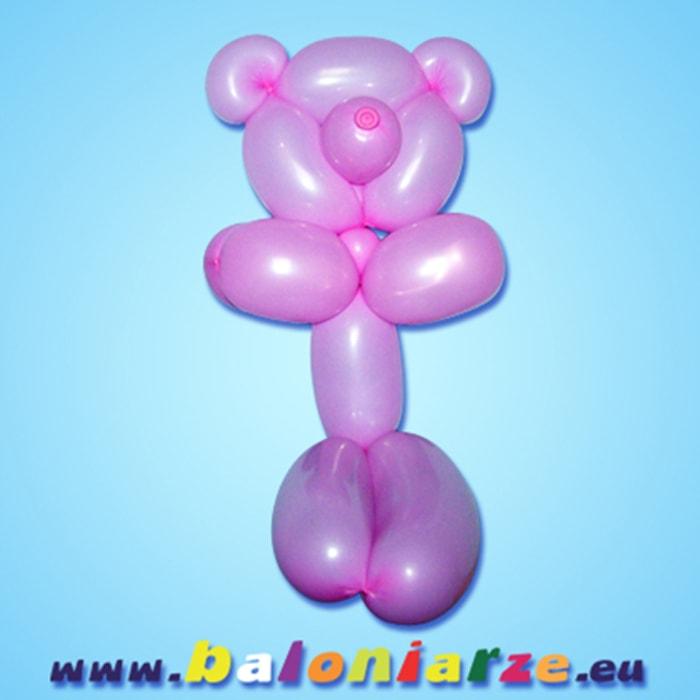 miś_baloniarze_modelowanie_balonów