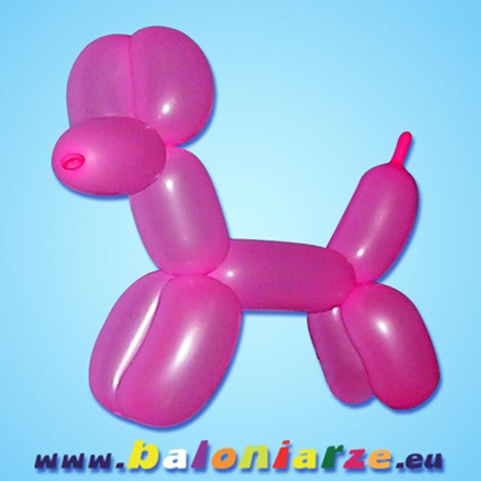 piesek_baloniarze_modelowanie_balonów